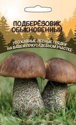 Грибы Подберезовик Обыкновенный