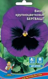 Виола Бегрвашт крупноцветковая