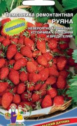 Земляника ремонтантная РУЯНА