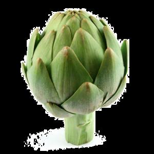 Семена Артишок