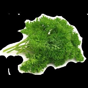 Семена Кервель
