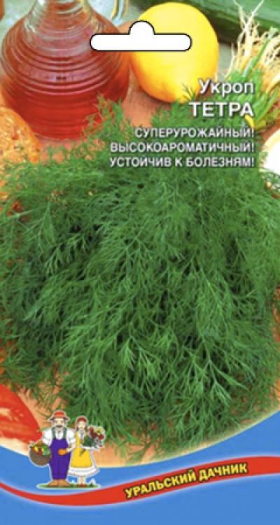 Укроп ТЕТРА