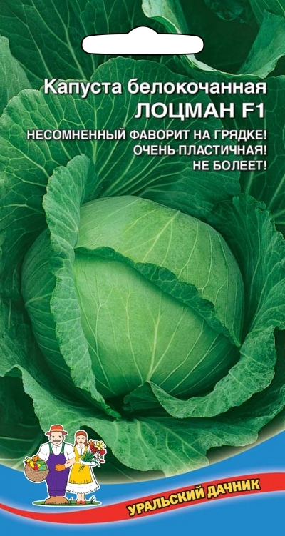 Капуста белокочанная ЛОЦМАН