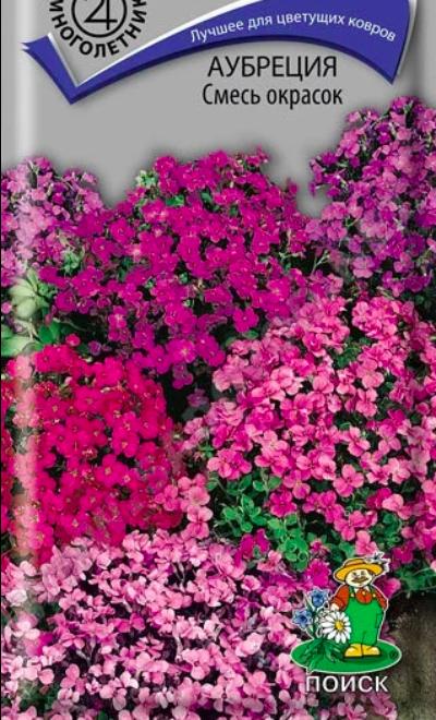 Аубреция Смесь окрасок