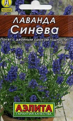 Лаванда Синева