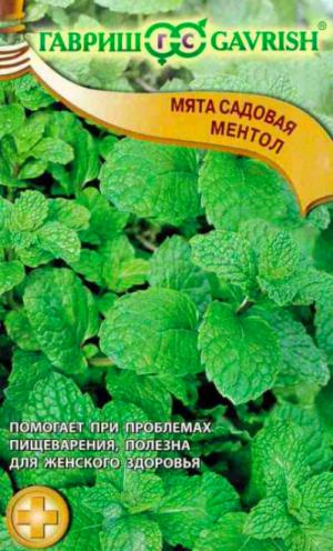 Мята садовая Ментол