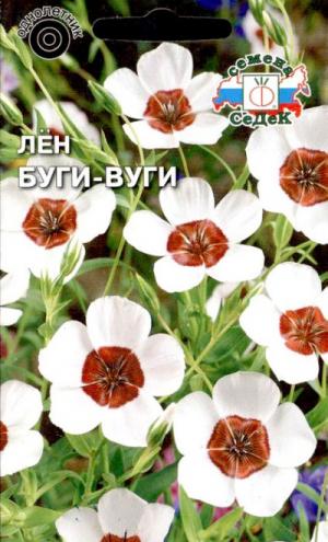 Лен Буги-Вуги крупноцветковый