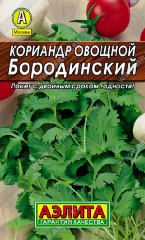 Кориандр Бородинский (А)