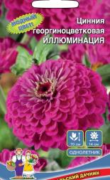 Цинния георгиноцветковая ИЛЛЮМИНАЦИЯ