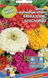 Цинния Кавказкие Красавицы