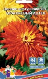 Цинния кактусовидная Оранжевый ацтек