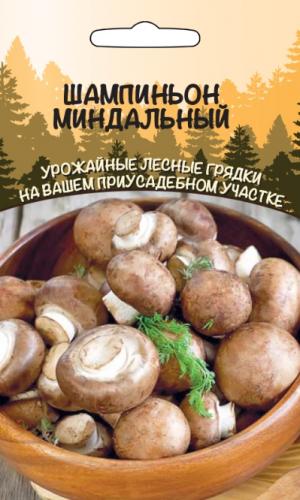 Шампиньон Миндальный
