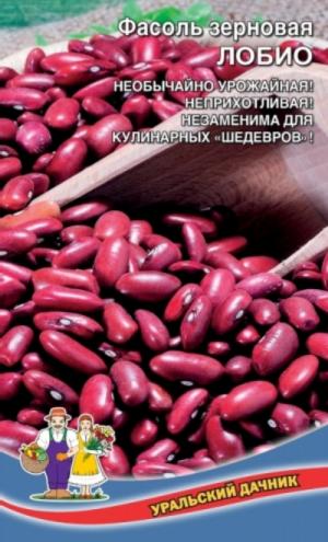 Фасоль Лобио зерновая