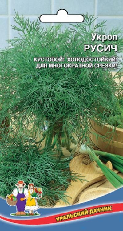 Укроп Русич